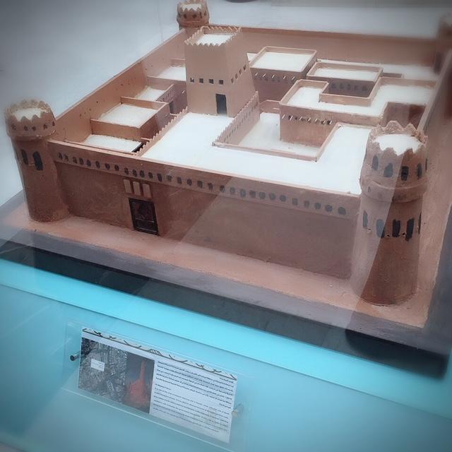 تفعيل دور المتاحف بجامعة الملك سعود