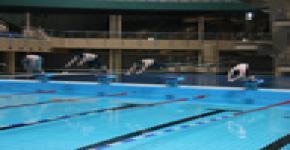 جامعة الملك سعود خامس بطولة الجامعات للسباحة