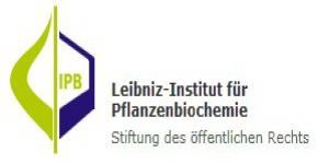 KSU Chair, Leibinz Institute of Plant Biochemstry discuss collaboration