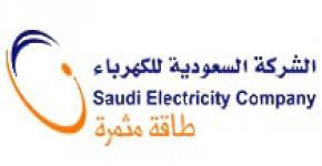 Saudi Electricity Company CEO Outlines Future Challenges for Saudi Electricity Power Generation