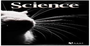 KSU-MPQ research team tames light, generates laser pulses to control electron motion