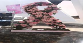 المدينة الجامعية للطالبات تقيم المعرض التثقيفي الأول للتوعية (بسرطان الثدي )