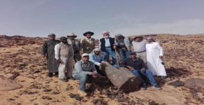 اكتشاف أحفورة مرشدة لطحالب عملاقة في المملكة