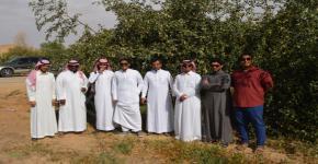 """ضمن مبادرة """" نحو وطن أخضر"""" طلاب كلية المجتمع يطلعون على الأبحاث والتجارب الزراعية"""