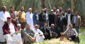 """""""الفاو"""": برنامج تدريبى لمنتجى التمور بالواحات لتطوير قطاع النخيل بمصر"""