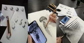 دورة في مبادئ الرسم بالفحم للطالبات الموهوبات