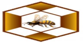 وفاء بالمسؤولية الاجتماعية, كرسي بقشان لأبحاث النحل يشارك في مهرجان القنفذة للعسل